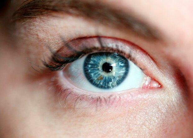 Wissenschaftler haben erklärt, wie man die Sehkraft über viele Jahre bewahren kann, Details