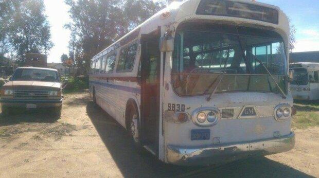 Junge Frau kaufte einen alten eingerosteten Bus und verwandelte ihn in das Traumhaus