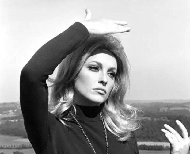 """""""Auf Wiedersehen, Baby"""": die schöne und traurige Geschichte einer der erfolgreichsten Schauspielerinnen, Sharon Tate"""