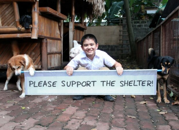 Der kleine Junge berührte seine Eltern mit seiner Liebe zu Tieren, und sie halfen ihm, ein Tierheim für streunende Hunde zu eröffnen