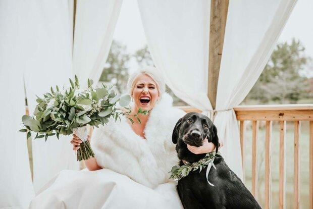 Die Braut nahm ihren geliebten Hund zu einem Hochzeitsfoto-Shooting mit, und er machte es besser als jeder Bräutigam