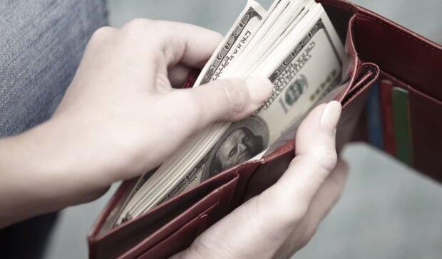 Das Portemonnaie mit dem Geld. Quelle:Screenshot YouTube