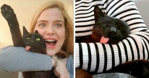 Pelzige Liebe: Wie die gerettete Katze mit heraushängender Zunge eine Familie fand