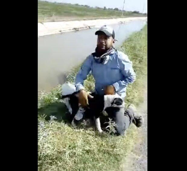 Hund und Retter. Quelle: Screenshot YouTube