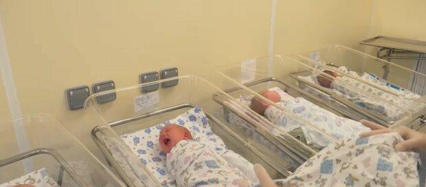 Neugeborene Babys.  Quelle: Youtube Screenshot