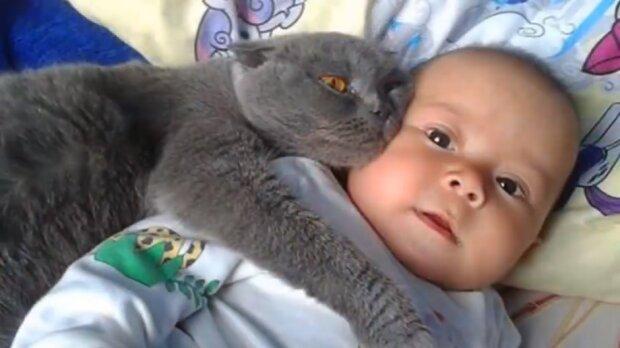 Die Katze und das Baby. Quelle:Screenshot YouTube