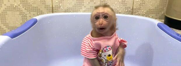 Süßes Baby. Quelle: Youtube Screenshot