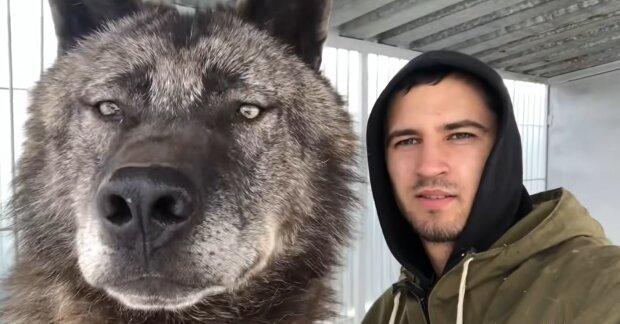 Großer Hund und ein Mann. Quelle: YouTube Screenshot