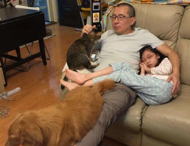 Warum Vater, Tochter, Hund und Katze seit vielen Jahren jährlich das gleiche Foto machen