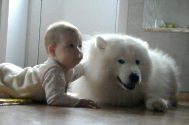 Samojede mit dem Baby. Quelle: Screenshot Youtube