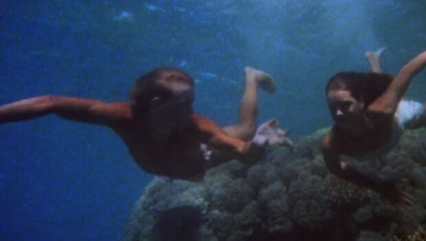 """Sie wurden von Millionen verehrt und dann vergessen: wie die Schauspieler des berühmten Films """"The Blue Lagoon"""" 40 Jahre nach der Premiere aussehen"""