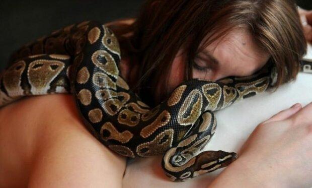 Eine Frau schlief jede Nacht mit ihrer Python. Der Arzt meint das ist nicht eine gute Idee